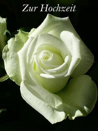 Hochzeitskarte weisse Rose