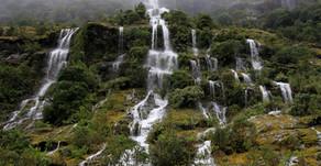 SeaFocus – Many Small Streams Make One Big River