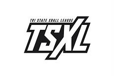 Website - TSXL.png