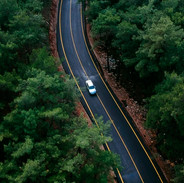 Remote road through forest
