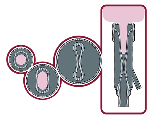 Evolution X1 Diagram