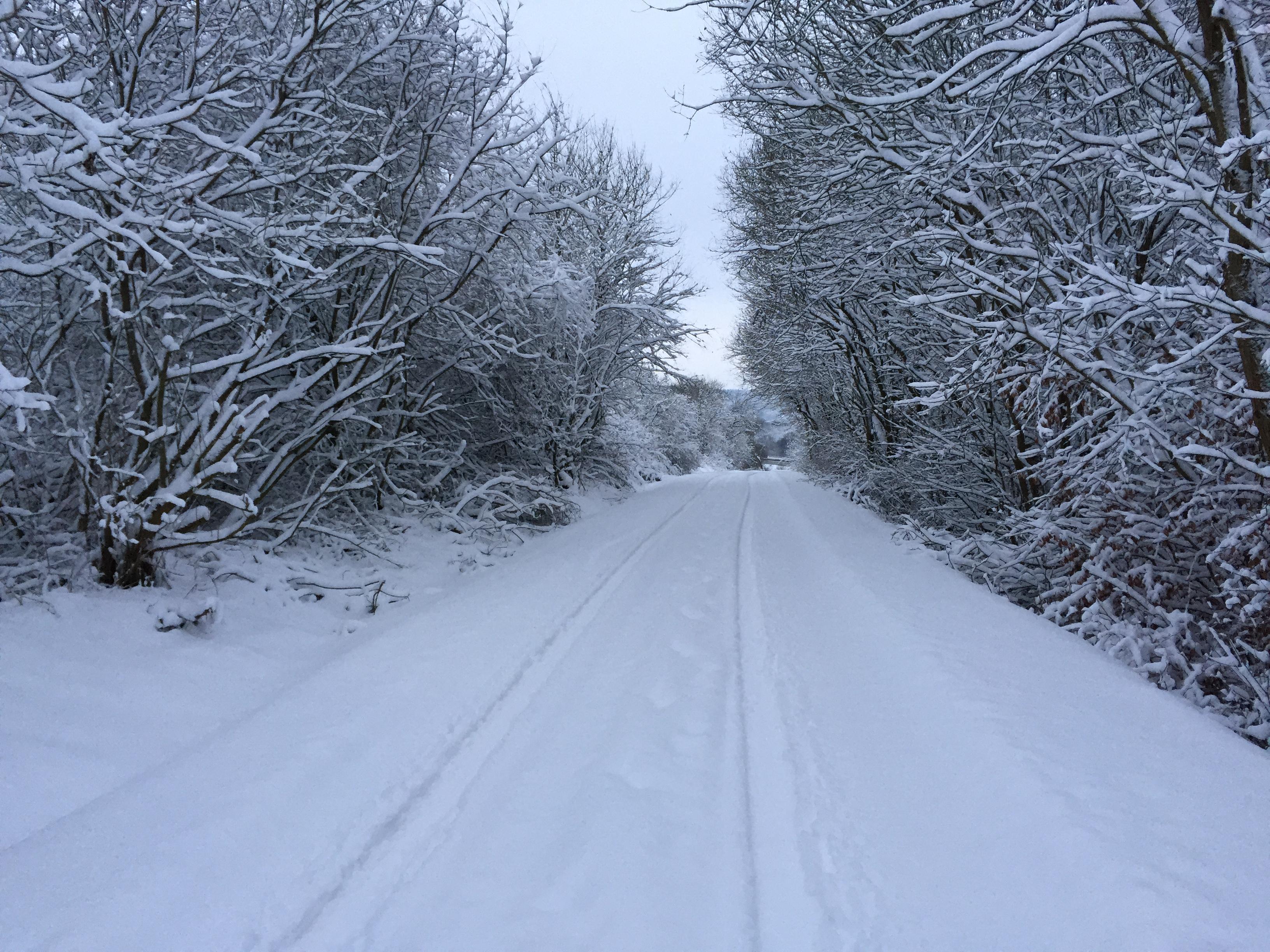 Straße im Gelände, es schneit weiter