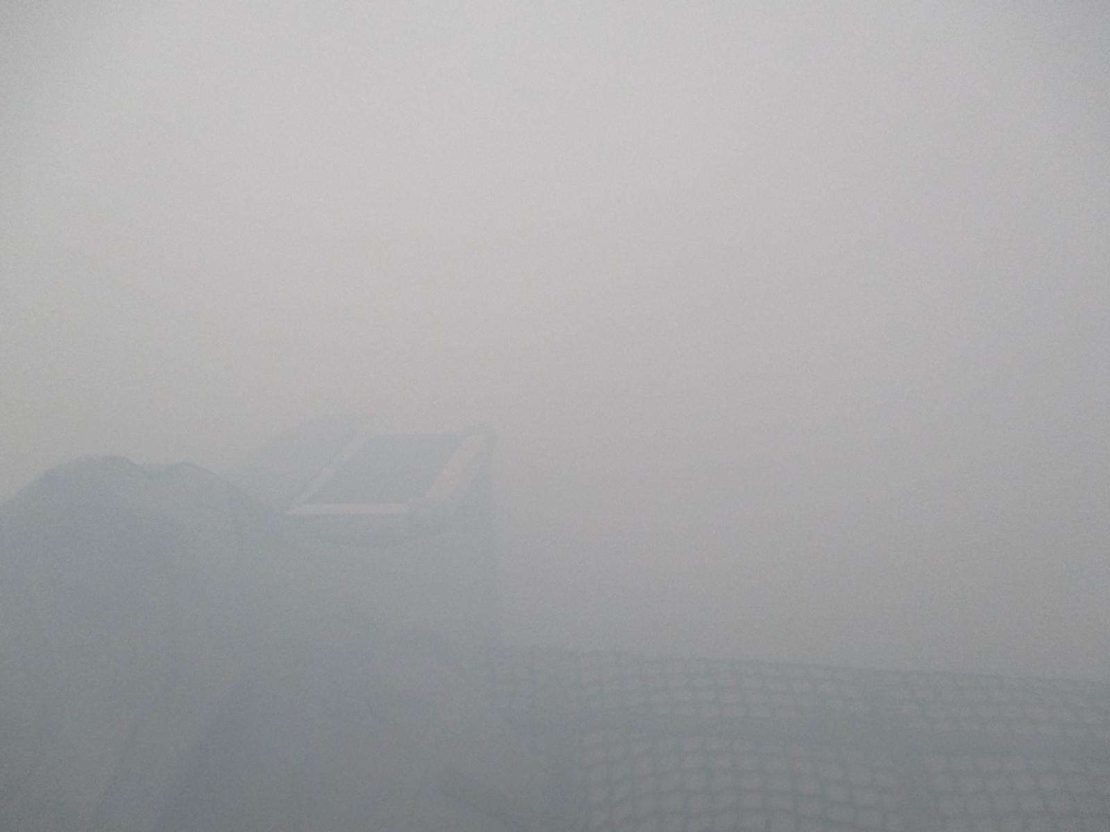 Nebel - ahoi!