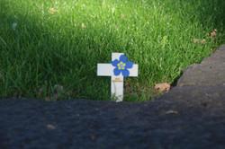 ...was den Besuch des Friedhofs für jeden zu einer persönlichen Erfahrung machte