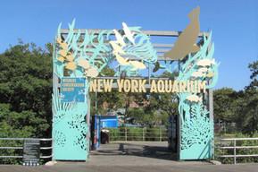 アメリカ ニューヨーク ニューヨーク水族館