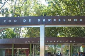 スペイン バルセロナ バルセロナ動物園