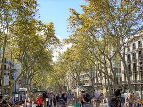 スペイン バルセロナ ランブラス通り:魅力・見どころ・おすすめレストラン・基本情報まで徹底ナビ!