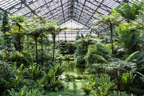 アメリカ シカゴ ガーフィールド・植物園