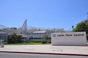 アメリカ ロサンゼルス カブリロ海洋水族館