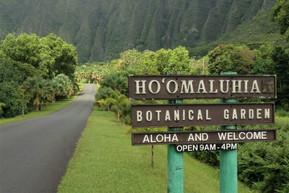ハワイ オアフ島 ホオマルヒア植物園