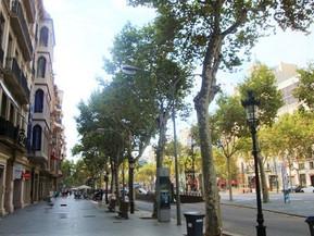スペイン バルセロナ グラシア通り:魅力・見どころ・アクセス方法まで徹底ナビ!