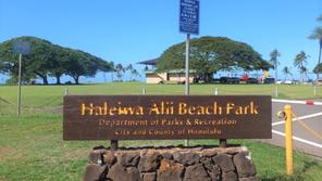 ハワイ オアフ島 ハレイワ・アリイ・ビーチ・パーク:「ウミガメ」遭遇率№1ビーチ!