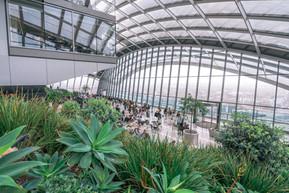 イギリス ロンドン スカイ・ガーデン:基本情報・魅力・見どころ・予約方法と裏技・アクセス・レストラン情報まで徹底ナビ!