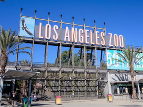 アメリカ ロサンゼルス ロサンゼルス動物園:魅力・見どころ・基本情報まで徹底ナビ!
