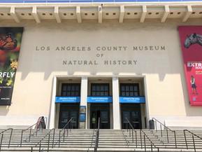 アメリカ ロサンゼルス ロサンゼルス自然史博物館