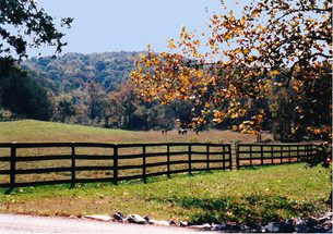 rivers bend farm 1.jpg