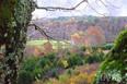 Valor Farm During Fall
