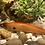Thumbnail: Orange Shad Pattern Shallow Diver Floating Jerk Bait