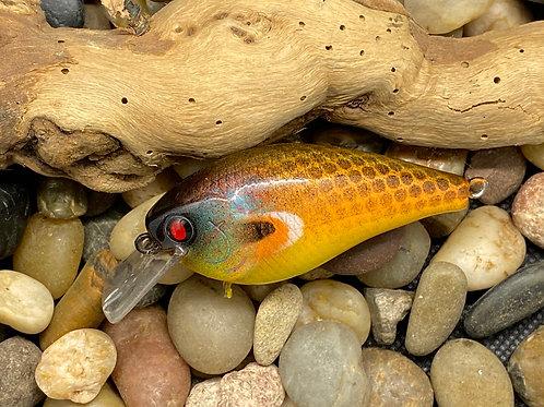 "1.5"" Squarebill in Sunfish Pattern"