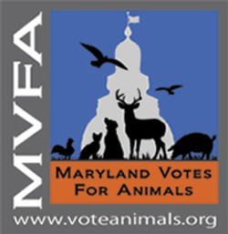 Maryland Votes for Animal
