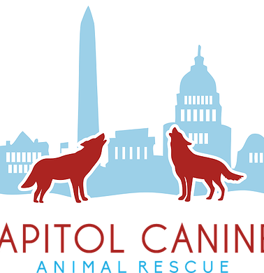 Capitol Canines Animal Rescue