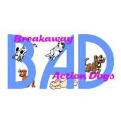 B.A.D., Inc.
