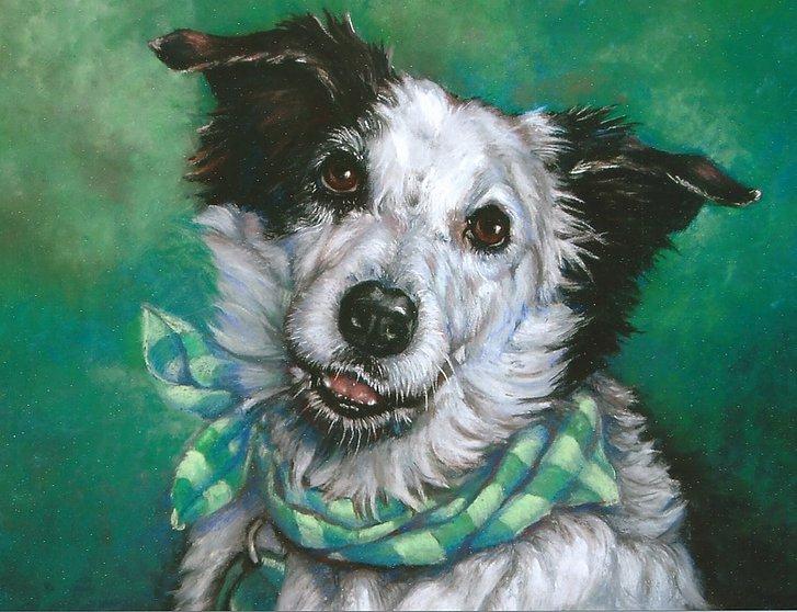 DogDaze Portraits