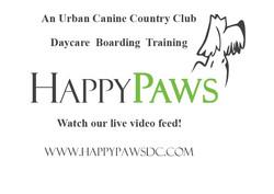 Happy Paws DC Dog Boarding
