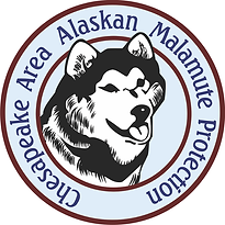 Chesapeake Area Alaskan Malamute Protect