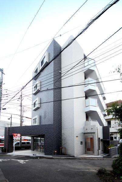 Pine Roof-2
