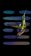 Hummingbird copy 2.PNG