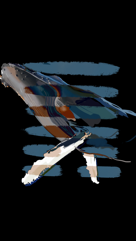 whale copy 2.PNG