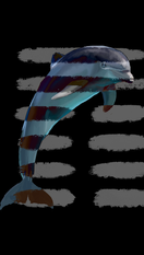 dolphin copy 2.PNG