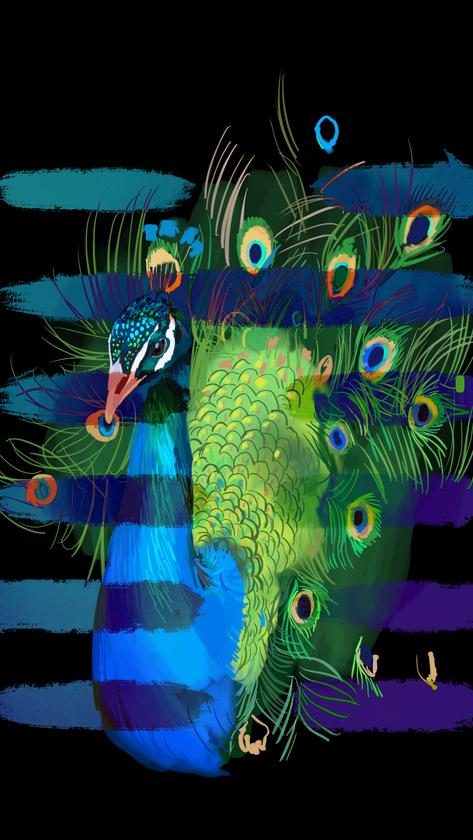 Peacock copy.png