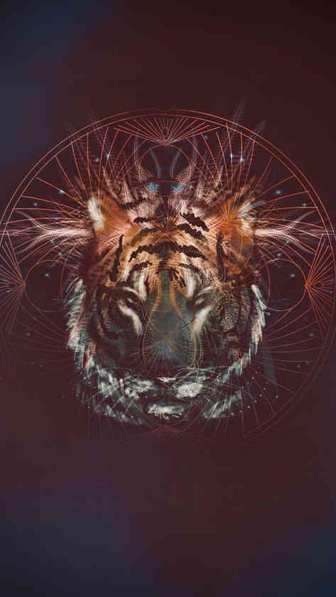 Shiva Tiger