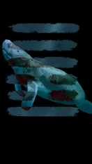 manatee copy.PNG