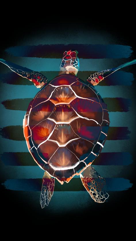 turtle copy 2.PNG