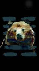 bear copy 2.PNG
