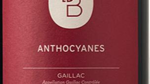 Gaillac Anthocyanes Domaine de Brin