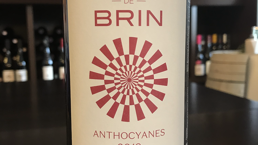 Gaillac Domaine de Brin Anthocyanes 2019