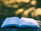 Formació en Sanació Prànica, Kinesiologia i Meditació-Mindfulness