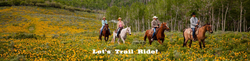 trail-ride-main-page