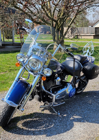 Thank you for doing such incredible work! My bike looks bad*** with this sissy bar! I absolutely love it! It gets so much attention and so many compliments. Shannon from  Ohio