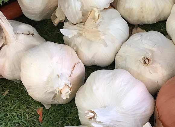 Jumbo French Garlic