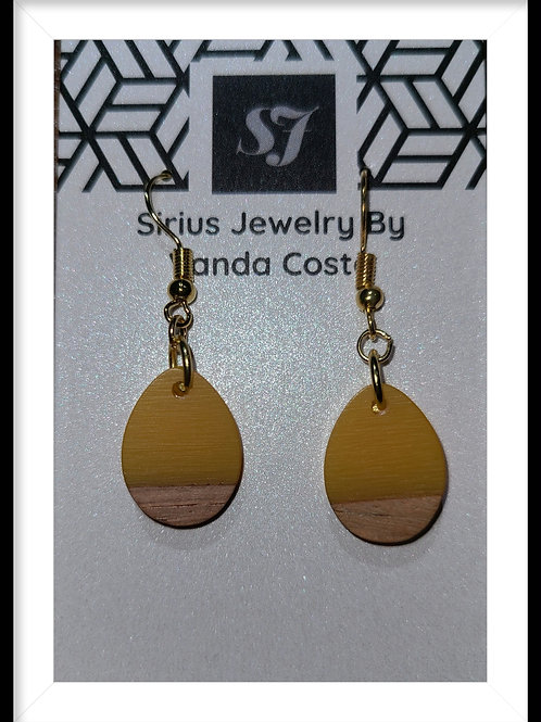 Resin and wood Earrings