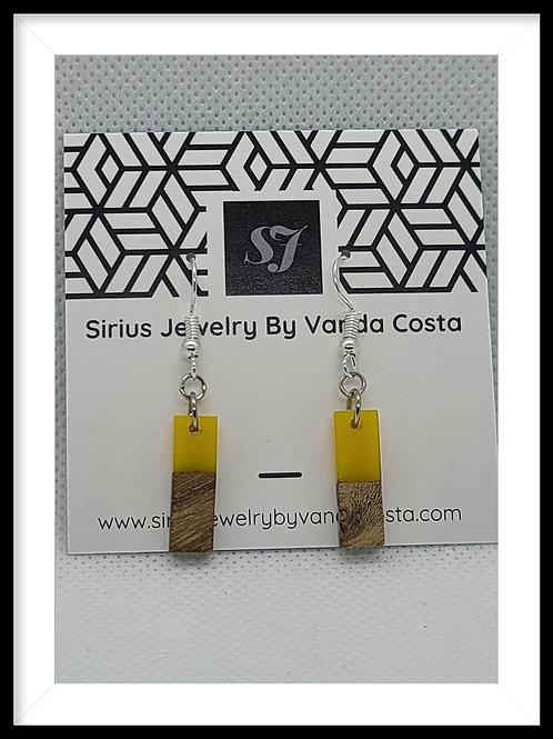 Wood &  Resin Earrings