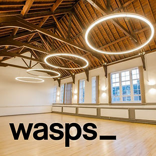 Wasps logo on hall.jpg