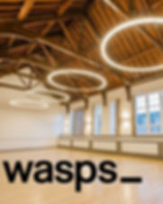 Wasps logo on hall.jpg