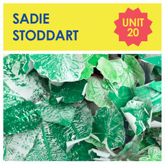 20A Sadie Stoddart.jpg