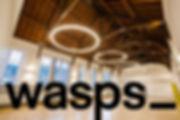 wasps gym hall.jpg